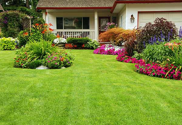 Bio Green Indy Natural Lawncare in Indiana