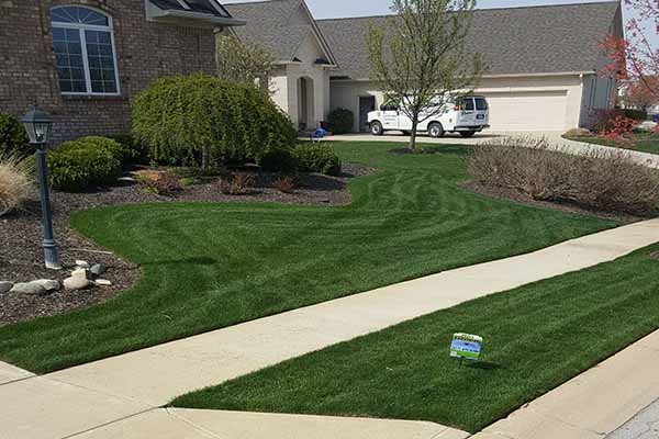 Bio Green Natural lawn fertilization